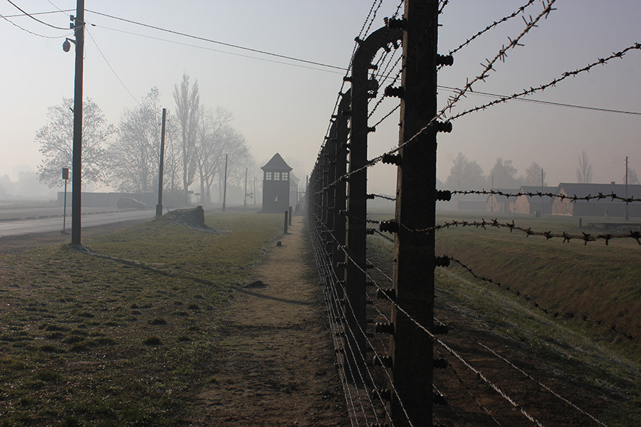 Auschwitz II-Birkenau - the fencing